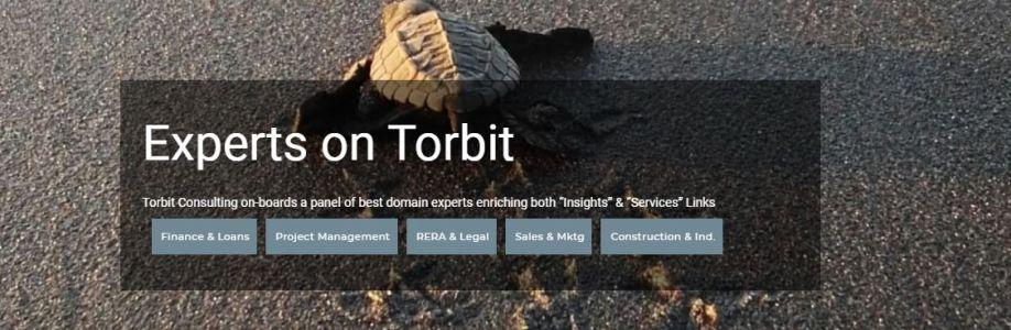 Torbit Consulting Cover Image